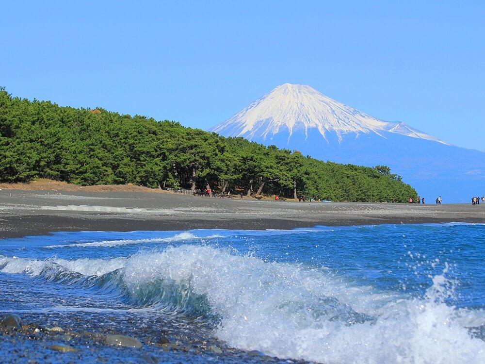 富士を望む駿河湾の美港<br>■清水