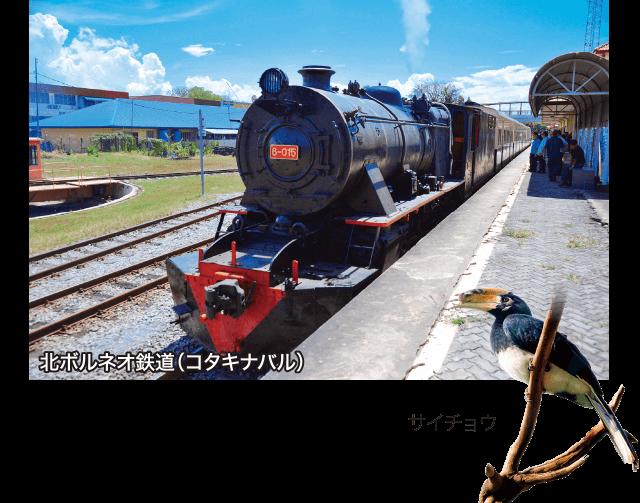 北ボルネオ鉄道(コタキナバル)